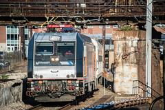Southern Vacation (Nick Gagliardi) Tags: train trains railroad philadelphia septa new jersey transit alp46 electric
