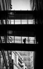 Workload (Peter Murrell) Tags: officeworker office workload overload cityoflondon london