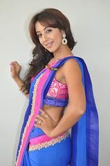 South Actress SANJJANAA PHOTOS SET-2 (3)