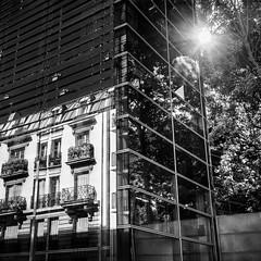 Reflet dans la Maison de Solenn, Paris (bruno2nis) Tags: againstdaylight architecture art backlighting contrejour francefra paris75 reflection reflet ledefrance paris france fra