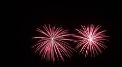 _MG_1203 (sdferrell) Tags: dmt fireworks ny