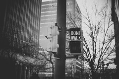 Don't Walk (MMortAH) Tags: 30mm america bw black d90 nikon oklahoma sigma usa building lights monochrome road sign traffic white winter