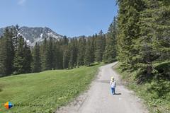 Wide path and lonely little men! (HendrikMorkel) Tags: austria family sonyrx100iv vorarlberg sterreich bregenzerwald mountains alps alpen berge natursprngewegbrandnertal