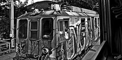 """Old Times"" (giannipaoloziliani) Tags: biancoenero monocromatico monocromo blackandwhite monochromatic monochrome train old casella railway nikon nikoncamera nikond3200 treno ferrovia oldstyle liguria genova italy graffiti machinist men landscape"