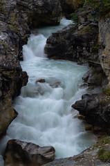 DSC_6282 (AmitShah) Tags: banff canada nationalpark
