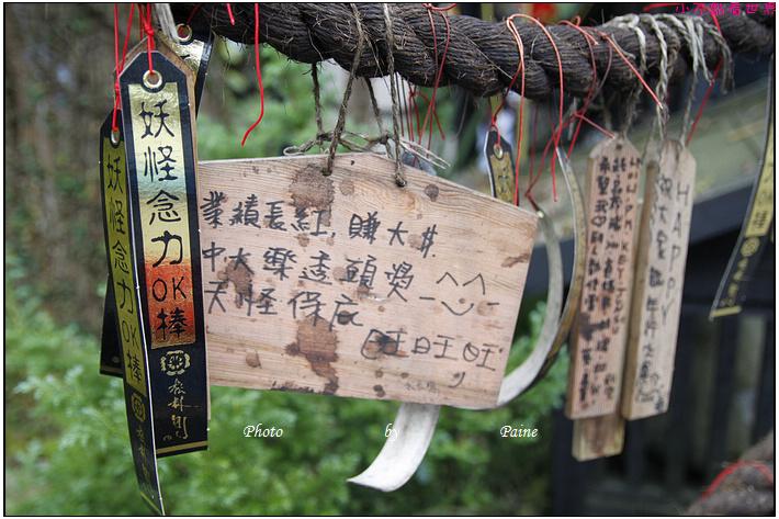 南投溪頭妖怪村 (159).JPG