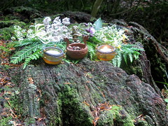 Altar for Thor (Thorskegga) Tags: wood uk england english woodland britain buckinghamshire ceremony offering british thor bucks pagan blot heathen asatru heathenry naphill