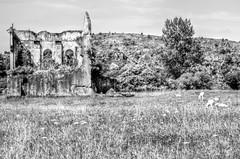 Pradera (inFocusDCPhoto  Young Spanish photographer) Tags: summer espaa white house black blanco casa spain nikon ruins europa europe negro ruinas verano cantabria pradera cabarceno d7000