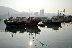 Beautiful fish port Lei Yue Mun,Hong Kong (travelhaha) Tags: hongkong hongkongphotos 100commentgroup