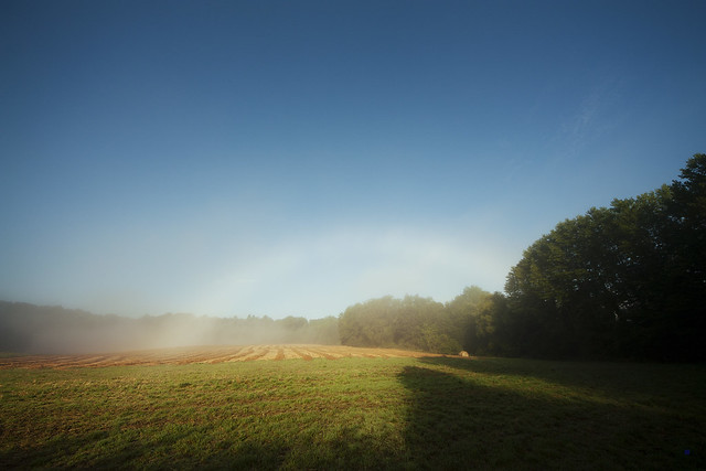 mist rainbow in the morning