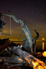 No Meteors but.. (MattFergusonPhotography) Tags: longexposure moon night swing perseids canonrebelt2i