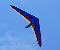 Hang Glider ~Steve Ford~ (Ron1535) Tags: golden colorado flight wing sail roll pitch soaring glider lookoutmountain hangglider thermals mtzion hanggliding deltaplane yaw rigidwing airframe freeflight freeflyer soloflight windcurrents hanggliderpilot glideraircraft soaringaircraft