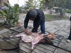 正在剥样的店主,为晚上的烤全羊,跳锅庄做准备。
