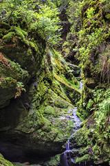160524_161035_CB_0327 (aud.watson) Tags: europe czechrepublic bohemia decindistrict hrenska riverkamenice kamenicegorge edmundgorge gorge ravine river water rocks rockformation cliffs
