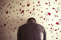 Why Won't You Let Me Love You (Bekkah Clifford) Tags: love boy roses petals sad faceless portrait man canon7d 7d canon 50mm losangeles surreal conceptualphotography fineart fineartphotography