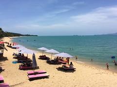 Koh Samui Maenam Beach (soma-samui.com) Tags: thailand kohsamui maenambeach beach maenam