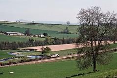 37886, Stokesay, Shropshire, May 1989 (David Rostance) Tags: 37886 class37 steel stokesay cravenarms onibury shropshire