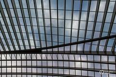 A selected view (sirixception) Tags: belgi belgium luik lige station dak roof lijnen lines up omhoog lucht sky luikguillemins sirixception sirixceptionfotografie