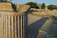 DSC_8758 (la Drugo) Tags: paestum open grecia greece rovine ruins scavi archeologia archeology colonna column antichit antique shadow ombra tramonto sunset