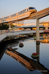Golden Gold (ddindy) Tags: monorail epcot waltdisneyworld disneyworld disney orlando florida