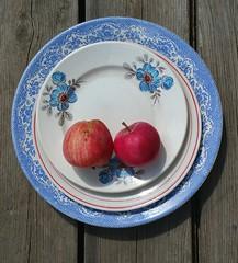 Plates & homegrown Apples ... Still Life Fruit Looking Down Blue Red Food China    at  (Almena14) Tags: plates apples stilllife fruit lookingdown blue red food china
