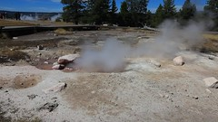 Hot Pot, Yellowstone Park, Wyoming, USA (GOD WEISFLOK) Tags: montana wyoming usa yellowstonepark gordweisflock weisflock guyser