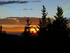 Sunrise (Colorado Sands (little break)) Tags: sunrise colorado rockymountains usa rockymountainhigh sky tree sandraleidholdt mtevans morning mountevans coucherdesoleil conifers