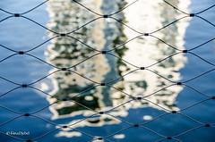 fence to the main, too (tina djebel) Tags: stadt town city frankfurt westhafen main port ports hafen zaun fence abstrakt spiegelung spiegelungen reflection form formen shape shapes