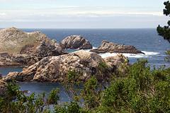 011-point lobos- (danvartanian) Tags: california pointlobos nature landscape ocean