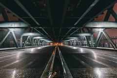 untitled (Denn-Ice) Tags: nyc ny new york newyork newyorkcity sony sonyalpha sonya7rii night nightphotography longexposure bridge