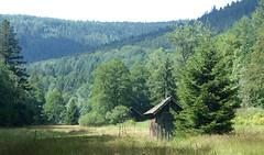 Eyachtal (Schwarzwald/Black Forest) (thobern1) Tags: eyach eyachtal wasserwegle schwarzwald blackforest foretnoir badenwürttemberg germany