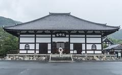 kioto (DROSAN DEM) Tags: kioto japan japon people gente golden