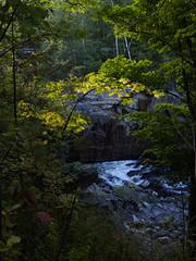 (ELIS ING) Tags: latesummer ruralroute backroads upstatenewyork sociallandscape smalltown earlyfall foliage earlymorninglight river gorge adirondacksregion