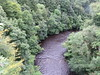 UK - Scotland - Lanarkshire - Near Hamilton - Chatelherault Country Park - Avon Gorge in Clyde Valley (JulesFoto) Tags: uk scotland chatelheraultcountrypark lanarkshire hamilton clydevalley avongorge
