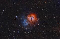 The Trifid Nebula (Latent0Image) Tags: trifid trifidnebula m20 sagittarius qhy qhy5iii178c stellarvue sv80st2 celestron avx sharpcap pixinsight