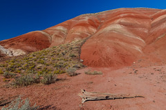 Painted Hills - 2 (rpdphotography) Tags: paintedhills
