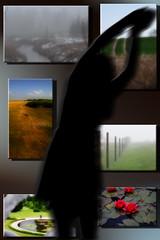 16-275 (lechecce) Tags: 2016 portraits landscapes flickraward nikonflickraward digitalarttaiwan sharingart trolled shockofthenew artdigital netartii blinkagain