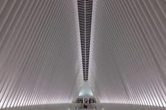 Oculus (pburka) Tags: oculus manhattan nyc architecture calatrava white ribs night interior repetition pattern stripe shadow