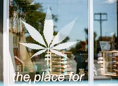 The Place For... (marysmyth(NOLA13) ) Tags: contax645 film kodakportra400 marijauna mediumformat queenstreeteast weed window words pot incense medicinal cannabis recreational religious spiritual thebeach