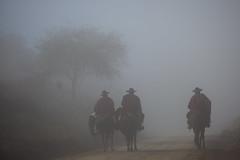 Gauchos (Javier Corbaln) Tags: tradicion salta argentina gauchos neblina paisaje