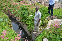 NSWMA to Clear Gullies Adjacent to Marcus Garvey Drive
