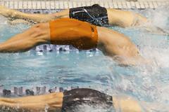 _MG_3551 (speedophotos) Tags: speedo speedos athlete bulge swimmer swimmers college lycra