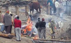 The Burning~Varanasi (Sandeep Santra) Tags: life people india architecture river temple fire death place details places burning varanasi activity hindu kashi mythology ganges benaras incredibleindia manikarnikaghat