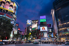 Night Falls in Shibuya (J.R.Photography) Tags: blue japan night canon tokyo neon shibuya rush hour blend thebluehour 24105mm 5d3