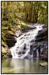 Kondalilla National Park Waterfall ( Sensei) Tags: park camera longexposure nature waterfall long exposure pretty treasure evil national handheld environment kit 1855mm idyllic montville preservation csc hater nex kondalilla