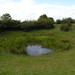 "Chanctonbury Dewpond • <a style=""font-size:0.8em;"" href=""http://www.flickr.com/photos/75085363@N00/7718385794/"" target=""_blank"">View on Flickr</a>"