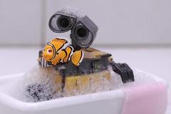 Bath Time! (emilykember) Tags: white fish water canon bath nemo sigma bubbles disney foam pixar 365 findingnemo walle 30mm 50d itsagiraffe walle365