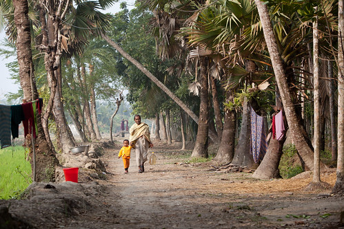 A village in Khulna. Photo by Mike Lusmore/Duckrabbit, 2012.