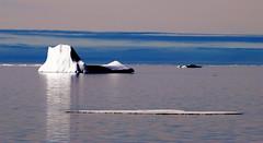 Iceberg in Grise Fiord, Nunavut (Ballygrant Boy) Tags: sea summer sky ice clouds nikon arctic inuit iceberg nunavut grisefiord d80 impressedbeauty 70300vr
