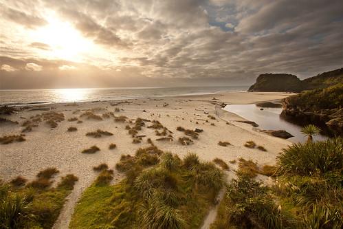 'Where the Wild Things Are', New Zealand, Okuru, Haast Beach